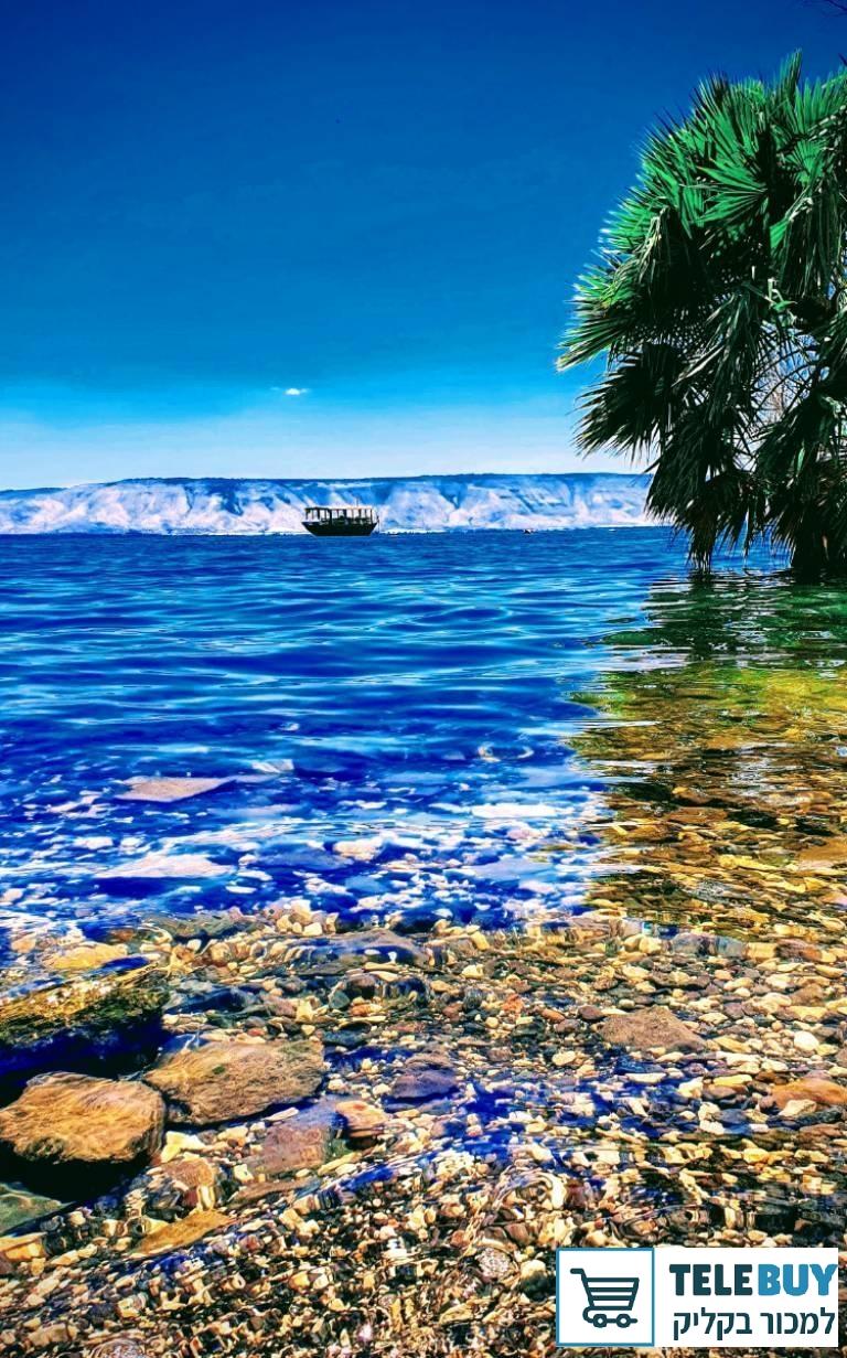 דירה בטבריה והסביבה
